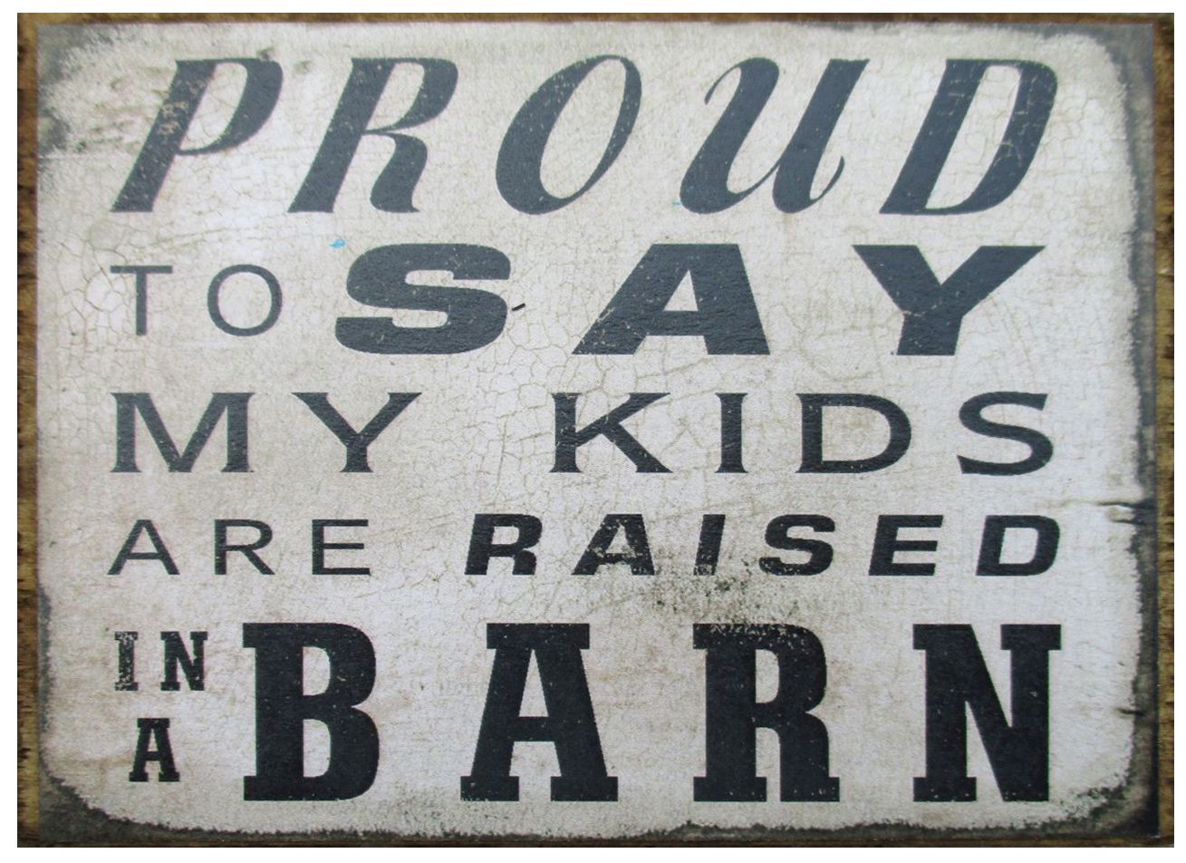 proud to say my kids were raised in a barnproud to say my kids are raised in a barn